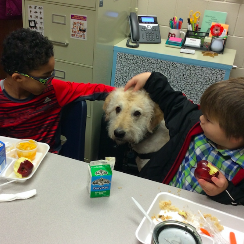 students eat with dog